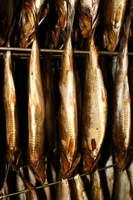 Smoking herring